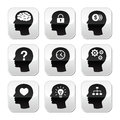 Head brain  buttons set Royalty Free Stock Photography