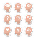 Head brain  labels set Royalty Free Stock Images