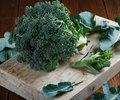 A head of broccoli with leaves Royalty Free Stock Photo
