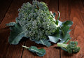 Head of broccoli with leaves Royalty Free Stock Photo