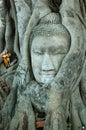 Head of Buddha image Stock Photo