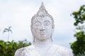 Head Buddha Statue