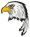Head of eagle with feathers