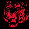 Head of fearsome tiger silhouette a on black background Royalty Free Stock Photography