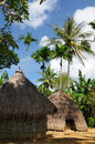 Head hunter village in indonesia hunters minority on the timor island near soe traditional grass hut Stock Photos