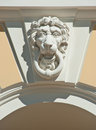 Head of lion Stock Images