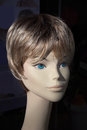 Head of a mannequin Royalty Free Stock Photo