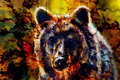 Head of mighty brown bear, oil painting on canvas and graphic collage. Eye contact.