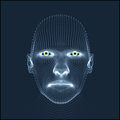 Head of the Person from a 3d Grid. Human Head Model. Face Scanning. View of Human Head. 3D Geometric Face Design. 3d Covering Skin