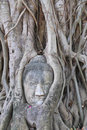 The head of the sandstone buddha. Stock Photo
