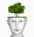 Head with tree Royalty Free Stock Photos