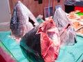 Head of Tuna fish. Royalty Free Stock Photo