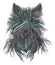 Head wolf wild beast of prey.