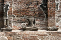 Headless Buddha ruins at the temple Royalty Free Stock Photo