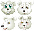 Heads of polar bears illustration the on a white background Royalty Free Stock Photo