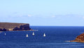 The heads of sydney on a fine sunny day with yachts sailing Royalty Free Stock Photography
