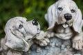 Porcelain Puppies
