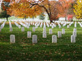 Headstones at arlington national cemetery a perspective photo of grave markers in washington d c serene autumn photo Stock Images