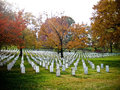 Headstones at arlington national cemetery a perspective photo of grave markers in washington d c serene autumn photo Royalty Free Stock Photography