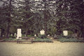 Headstones in cemetery Royalty Free Stock Photo