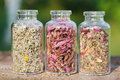 Healing herbs in glass bottles herbal medicine with on wooden board sunset sunlight Stock Photo