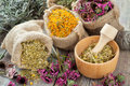 Healing herbs in hessian bags, wooden mortar with chamomile Royalty Free Stock Photo