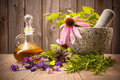Healing herbs with mortar and bottle of essential oil on wood Stock Photos