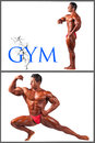 Health and fitness bosybuilding gym banner this image has attached release Royalty Free Stock Image