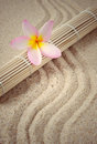 Health spa setting with bamboo mat and frangipani flower Royalty Free Stock Photo