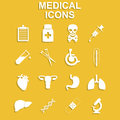 Healthcare and Medical Icon Set