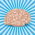 Healthy brain on a blue background with lines Stock Photos