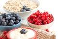 Healthy breacfast fresh berries and natural yogurt or sour breakfast cream Stock Image