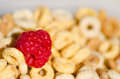Healthy breakfast with cereals and berrys blueberry raspberry milk selective focus Stock Images