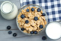 Healthy breakfast concept - bowl of cereals with fresh blueberries, glass and jug of milk Royalty Free Stock Photo