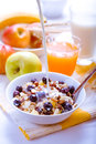 Healthy breakfast muesli with blueberries Royalty Free Stock Photo