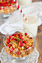 Healthy breakfast whith granola and milk Royalty Free Stock Photo