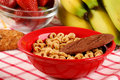 Healthy cereal food Stock Photography