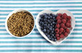 Healthy diet high dietary fiber breakfast with bowl of bran cereal and berries on white heart plate on aqua blue white place Stock Photos