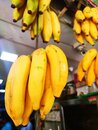 Healthy diet yellow ripened bananas kept in the shop Royalty Free Stock Photo