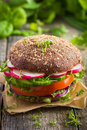 Healthy fast food. Vegan rye burger with fresh vegetables Royalty Free Stock Photo