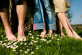 Healthy feet: In a row Royalty Free Stock Photo