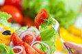 Healthy food fresh vegetable salad and fork Royalty Free Stock Photos