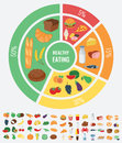 Healthy food for human body. Healthy eating infographic. Food and drink. Vector