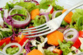 Healthy Fresh Salad Stock Photography