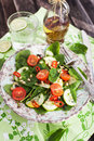 Healthy fresh spring salad with spinach tomato cucumber and pine nuts Royalty Free Stock Images