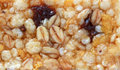 Healthy granola bar texture , macro Royalty Free Stock Photo