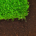 Healthy grass and soil Stock Photo