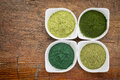 Healthy green dietary supplements four supplement powders spirulina chlorella wheatgrass and moringa leaf in white bowls on a Royalty Free Stock Images