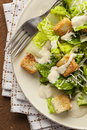 Healthy Green Organic Caesar Salad Royalty Free Stock Photo