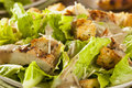 Healthy Grilled Chicken Caesar Salad Royalty Free Stock Photo
